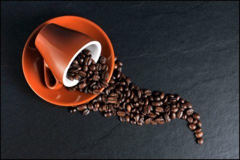 caffe polifenoli