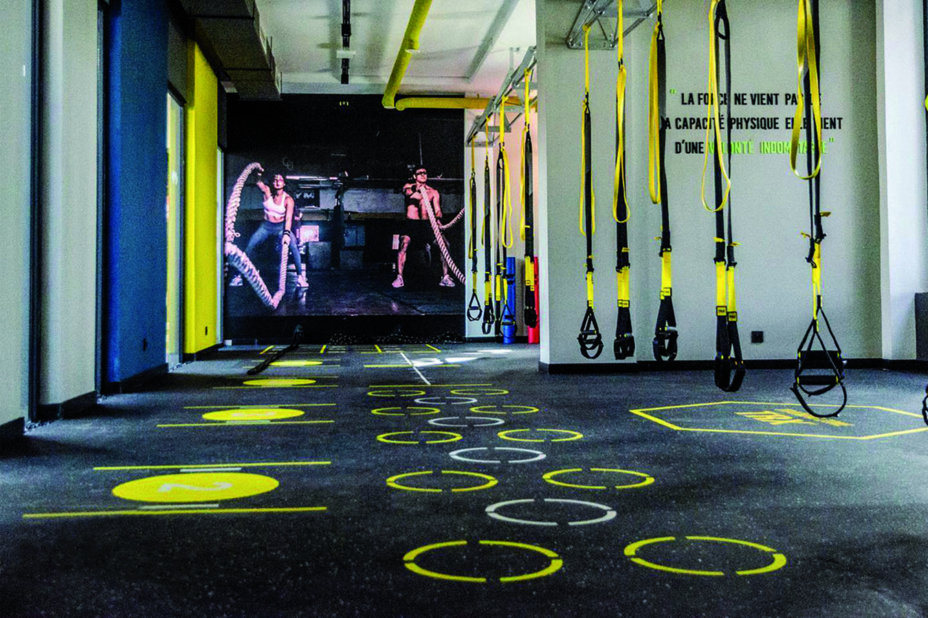 PaviFLEX Fitness Xtreme